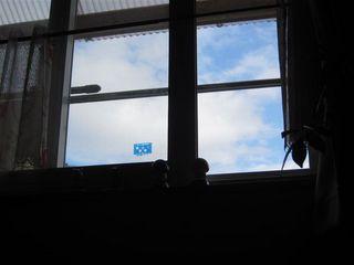 仮設の窓_s.jpg