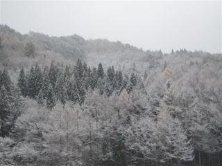 初雪_s.jpg